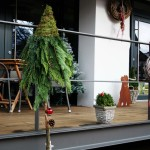 Unser Café - Herzlich Willkommen!